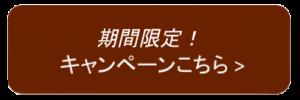 スクリーンショット 2015-10-05 23.45.17